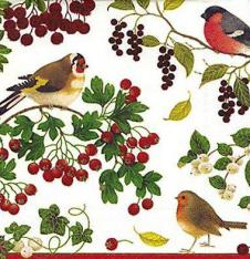 4 x Paper Napkins Winter birds